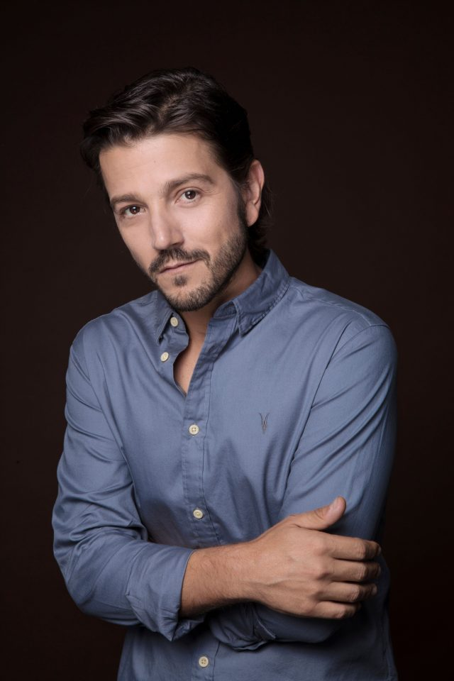 Diego Luna, Actor